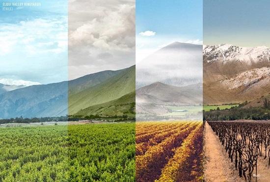 چهار فصل در ۵ قاره