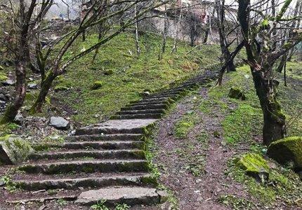 پله های سنگی پارک جنگلی صفارود | Photo by : z.zk66