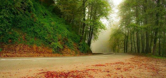 جاده دالخانی | Photo by : Masoud Abbaszadeh