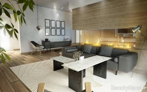 طراحی داخلی سالن پذیرایی
