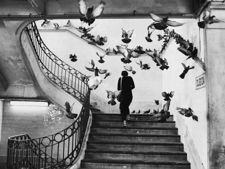 آموزش عکاسی در سفر   Photo by : Henri Cartier-Bresson
