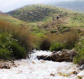 چشمه های دشت آزو | Photo by : Peyman Seyyedi | Karnaval