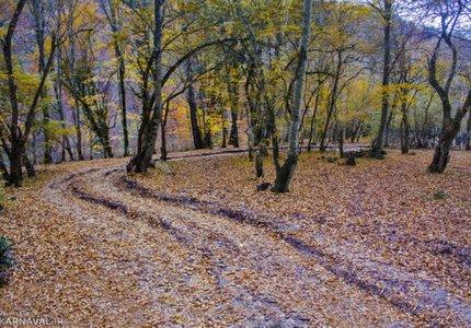 مسیر چورت | Photo by : Gholamreza Rezaei Aghoozgalle | IRNA