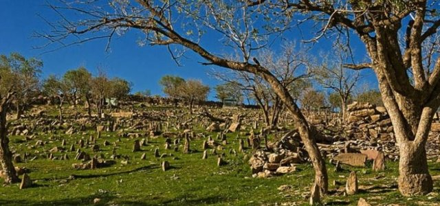 قبرستان قدیمی | Photo by : Unknown