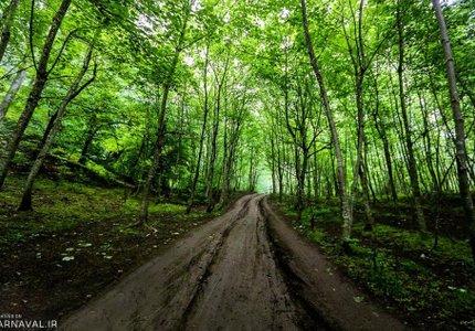 مسیر چورت | Photo by : Mohammad Khademosheikh