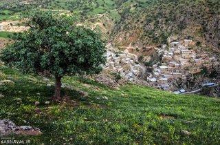 طبیعت پالنگان | Photo by : Seyyed Mosleh Pirkhazraeian | IRNA