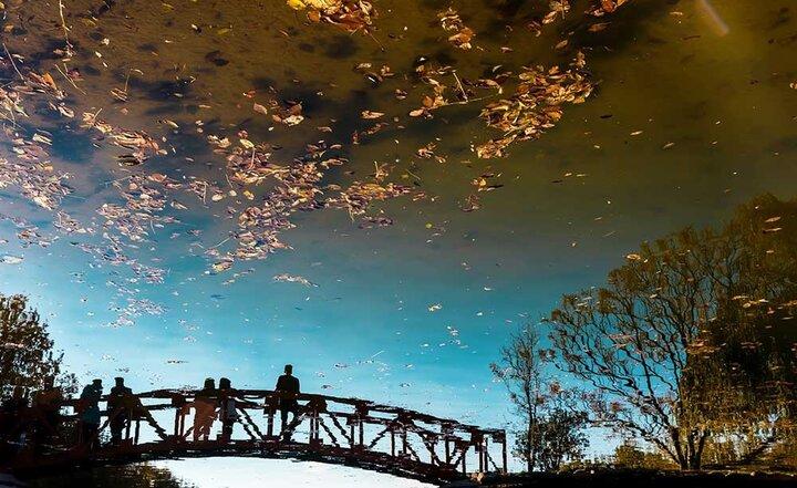 ۵ مسیر پیادهروی پاییزی در تهران؛ از «دره جنی» تا خیابان «هزار چهره» | سیاسیترین و نوستالژیکترین پیشنهاد پاییزگردی