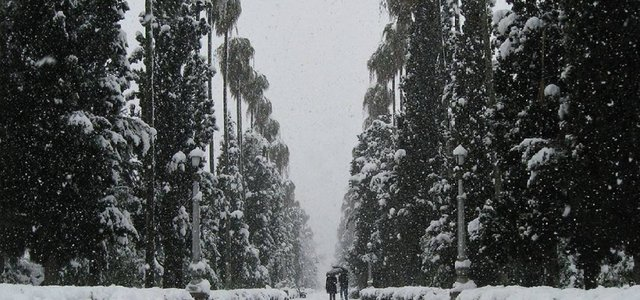 بلوار کازینو در برف | Photo by : Manoochehr khanramaki
