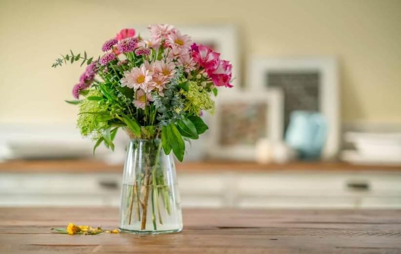 نگهداری از گلهای محبوب بهاری